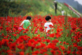 Children at the  Theme park garden Paju — Stock Photo