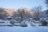 来蘇寺の寺院での冬の風景 — ストック写真