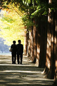 People walking in the park Nami  Island — Stock Photo