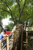 Niños jugando en el parque — Foto de Stock