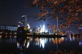 Lotte World amusement park — Stock Photo