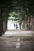 Couple walking on forest road — Stock Photo