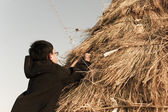 Traditional cultural event in South Korea, Daeboreum — Stock Photo