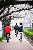 Children ride on a bike — Stok fotoğraf