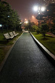 Yeouido Park in  Seoul — Stock Photo