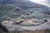 Beautiful Village in South Korea — Stock Photo