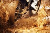 Motorcycle Racing — Stock Photo