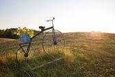 Antique bike with flower pot on field — Stock fotografie