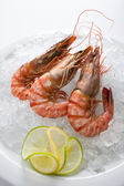 Three grilled tiger prawns displayed over crushed ice — Stock Photo
