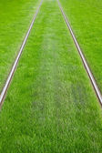 Tram tracks surrounded by green grass — Zdjęcie stockowe