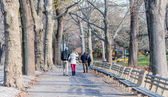 Classical Central park scenery — Stock Photo