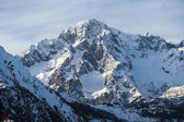 Massif Mont Blanc view — Stock Photo