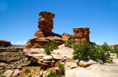 Canyonlands National Park in Southeastern Utah - The Needles — Stock Photo