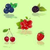 Set of vector berries — Stock Vector