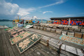 Commercial fishing boats in the peer — Stock Photo