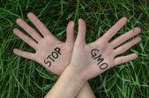 Open hands raised, Stop GMO — Stock Photo