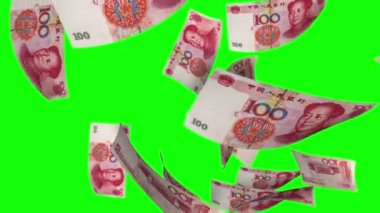 Falling Yuan (Loop on Greenscreen) — Stock Video