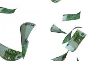 Falling Euro (Loop on White) — Stock Video