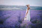 Beautiful young woman posing in a lavender field — Stock Photo