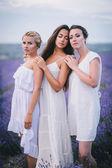 Three women posing in a lavender field — Stock Photo