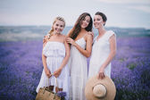 Three women posing in a lavender field — Stok fotoğraf