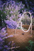 Bag with lavender — Stock Photo