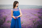 Woman with a bouquet of lavender standing in a lavender field — 图库照片