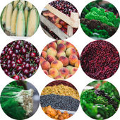 Summer fruit and vegetables collage — Stock Photo