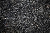 Texture a charred wood — Stock Photo