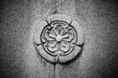 Stone Flower — Stock Photo