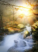 Where river goes, where sunlight flows — Stock Photo