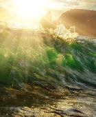 сокровища моря — Стоковое фото