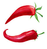Red hot chilli pepper on white background — Stock Vector