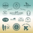 Retro design elements Summer holidays vector set. Vintage ornaments and labels — Stockvector