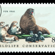 Fur Seals Postage Stamp — Stock Photo