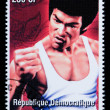 Bruce Lee Postage Stamp — Stock Photo #46572437