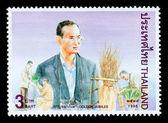 Kingdom Of Thailand Postage Stamp — Stock Photo