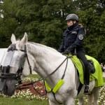 Police woman on horseback — Stock Photo #47910429
