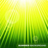Summer sunburst on green background — Vecteur