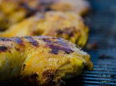 Grilled chicken with yogurt turmeric — Foto de Stock