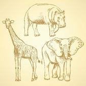 Sketch elepant, giraffe and hippo, vector background — Stock Vector
