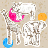 Sketch giraffe, elephant, rhino, vector background — Stock Vector