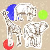 Sketch elephant, giraffe and hippo, vector background — Stock Vector