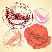 Sketch poppy, vector vintage background — Vecteur