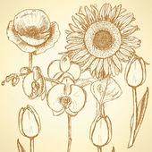 Sketch flowers, vector vintage backgrounds — Stock Vector