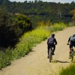 Couple riders with the bikes moving up so hard on the mountain trail — Stock Photo #46687247