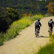 Couple riders with the bikes moving up so hard on the mountain trail — Stock Photo #46687263