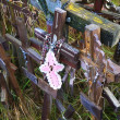 Hill of Crosses, Lithuania — Stock Photo