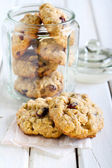 Oat, cranberry wholemeal cookies — Stock Photo