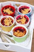 Berry crumbles — Stock Photo